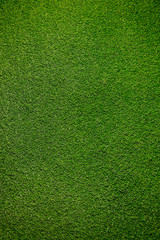 Aluminium Prints Grass greem artificial grass background texture