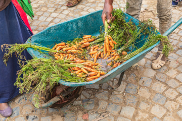 Carrots for sale at the market in Debark