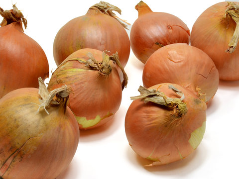 Yellow onions on a white background