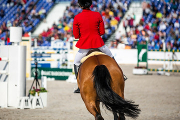 Equestrian sports, horse jumping, show jumping event.