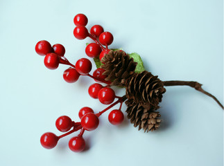 Hawthorn Sprig With Red Berries and Pine Cones