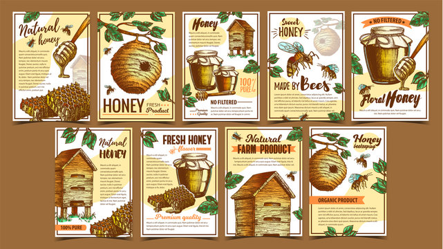 Bee Insect, Wild And Wooden Beehive Posters Vector. Bee Insects, Dipper Stick, Glass Bottle With Honey And Honeycombs. Beekeeping And Sweet Organic Product Layout Designed In Retro Style Illustrations
