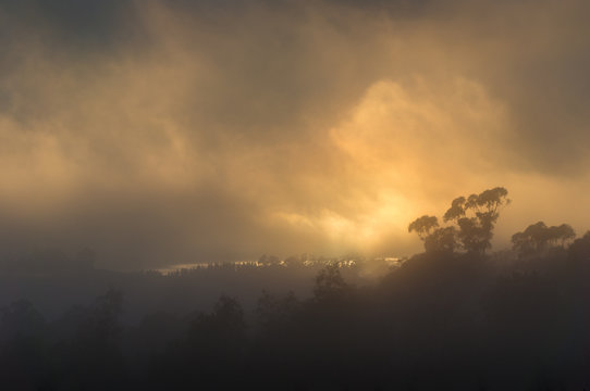 Climate change apocalyptic landscape with orange smoke from burning forests