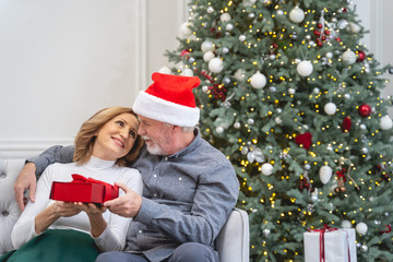 Delighted loving couple celebrating Christmas at home