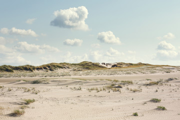Dune landscape at the North Sea with no people