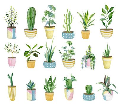 Watercolor set of home plants in flower pots. Hand drawn watercolor for banner, print, home or garden decoration..jpg