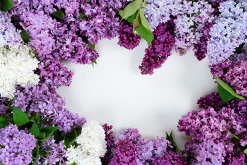 Fotorollo Flieder Fresh lilac flowers