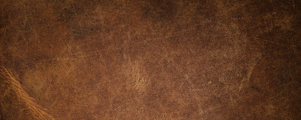 Poster de jardin Retro leather texture. simple background texture.