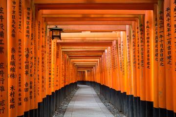 Torii path at Fushimi Inari Taisha Shrine in Kyoto, Japan