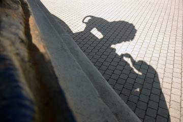 Shadow of photographer and lion taking pictures of iron lion statue