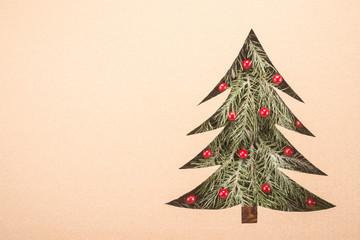Beautiful spruce in corrugated cardboard