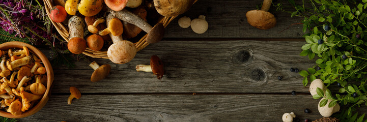 Fototapeta Mushrooms on old wooden background. Card on autumn or summertime. Forest harvest. Boletus, chanterelles, leaves, berries. Top view. Flat lay. Banner. obraz