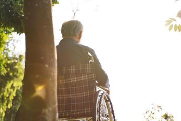asian senior man sitting in wheel chair