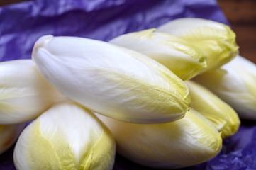 Fresh white belgian endive or chicory heads