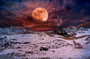 Fotobehang Noordzee Eine Vollmondnacht ( Blutmond ) im Winter. In der Dünenlandschaft an der Nordsee.