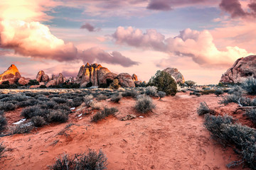 Foto op Plexiglas Zalm Desert landscape and layered rock formations lit by sunset in Arches National Park near Moab, Utah, USA.