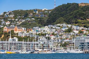 Blick vom Hafen von Wellington auf Mount Victoria auf der Nordinsel von Neuseeland.