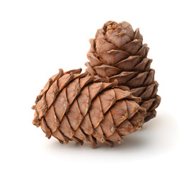 Two ripe pine cones