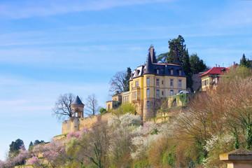 Haardter Schloss während der Mandelblüte im Frühling - Haardter castle during the almond blossom in spring