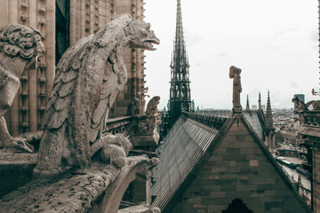 Fotobehang Historisch mon. Notre Dame Cathedral Gargoyle And Steeple In Paris France
