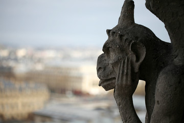 Foto op Plexiglas Historisch mon. A Notre Dame Cathedral Gargoyle Looking Over Paris France
