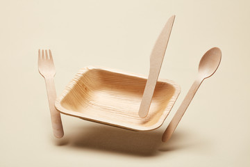 Arranged organic plate with cutlery