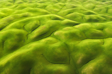 Aerial view of green hills in Napa County