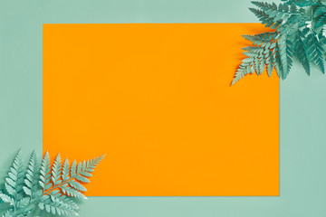 Branches Of Green Leaves On Blue Background With Yellow Paper.