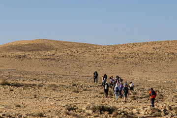 A group of young and old people walks along the rocky Israeli desert with a guide in front and a guard from behind on a hot sunny day against a blue sky