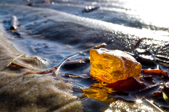 amber in the Wadden Sea in Cuxhaven, Germany
