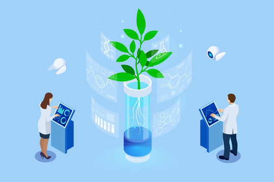 Isometric concept of laboratory exploring new methods of plant breeding and agricultural genetics. Plants growing in the test tubes.