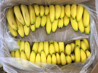 Close-up full frame view of Bananas displayed in a box at a market stand