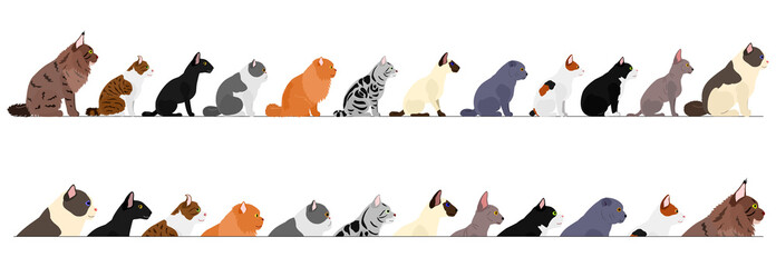 set of  side view cats border
