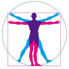 Medical, health, human body image illustration. An illustration of a human figure drawn by Leonardo da Vinci.Beautiful proportions, Vitruvian human figure.
