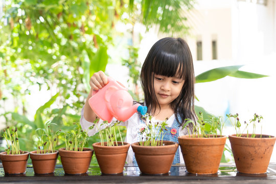 Adorable 4 years old asian little girl is watering the plant  in the pots in the garden outside the house, concept of plant growing learning activity for preschool kid. And child education of nature