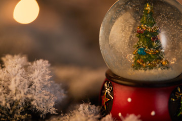 close up of little snowball with christmas tree standing in snow