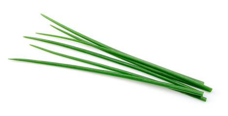 Fototapeta Chives isolated. Young green onion. obraz