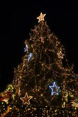 großer Weihnachtsbaum in Stadt, Hochformat, copy space