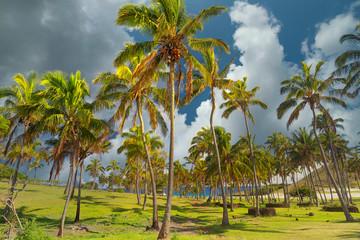 Beach Easter Island