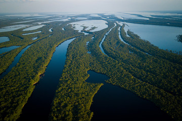 Anavilhanas National Park is home to the second largest river archipelogue in the world, on the Rio Negro. Amazonas, Brazil. Wall mural