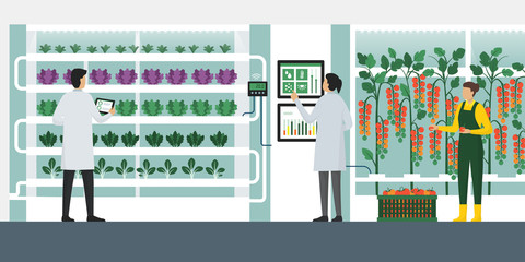 Vertical farming hydroponics Wall mural