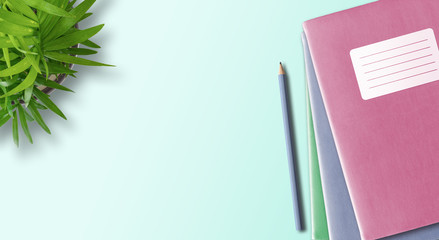 directly above shot of stack of notebooks or exercise books with blank adhesive label and pencil on desk with green potted plant, education concept