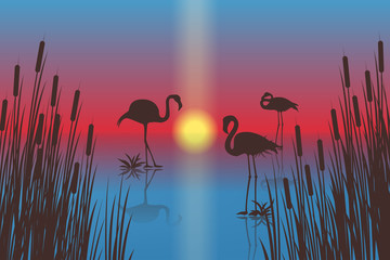Sunset landscape with silhouettes of flamingos