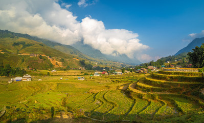 Landscape with farm and rice field in Sapa, Vietnam