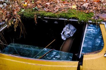 Skull Mask in Wrecked Car in a Junkyard