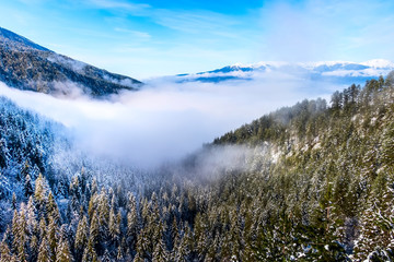 Bansko, Bulgaria aerial winter holiday vacation background with pine trees and snow pirin and Rila mountain peaks, copy space
