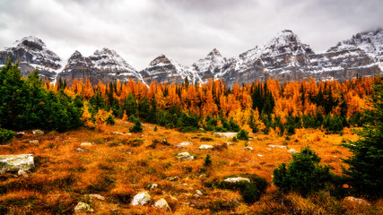 Epic Mountains In The Valley Of The Ten Peaks In Autumn Color