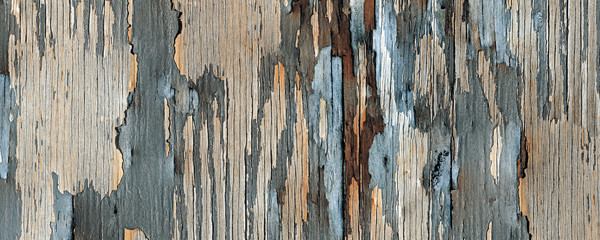 Old scratch vintage aqua and beige painted wood planks, rustic wooden texture background; it can be...