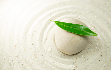 White stone with a green leaf  in white sand, passing through the circles, copy space