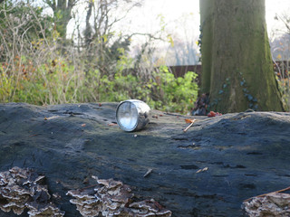 lost bicycle lamp left on a fallen tree in the park